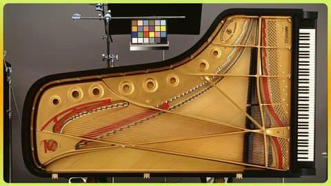 Piano FLUENTLY