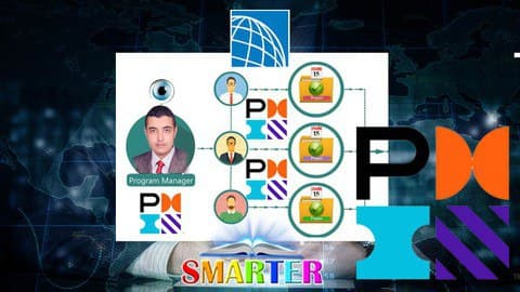 Program Management Professional