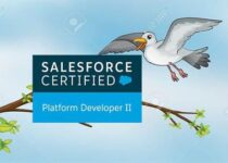 Salesforce Certified Platform
