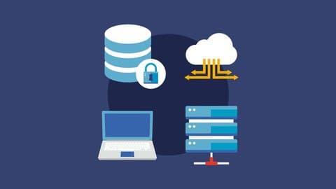 Database Developer umedy