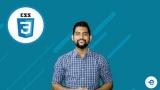 Become Pro Frontend Web Developer – CSS – Basics to Advanced 100 % free