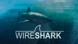 100% Free-Wireshark: Packet Analysis and Ethical Hacking: Core Skills