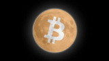 100% Free-The Simple Bitcoin Course 2021