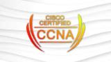 100% Free-Cisco Certified Network Associate CCNA 200-301 Practice Test