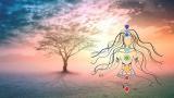 100% Free-7 Chakras Meditation