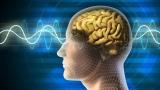 100% Free-Quantum Physics/Quantum Computing (University Level Course)